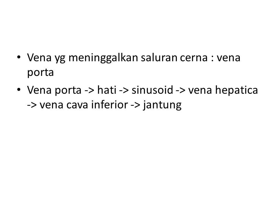 Vena yg meninggalkan saluran cerna : vena porta Vena porta -> hati -> sinusoid -> vena hepatica -> vena cava inferior -> jantung