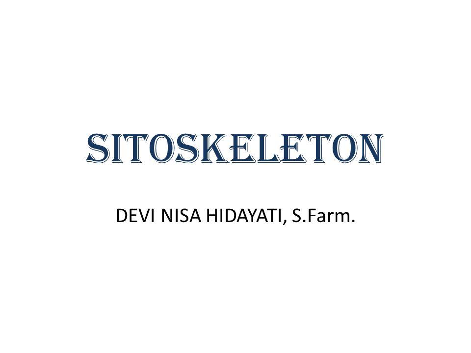 SITOSKELETON DEVI NISA HIDAYATI, S.Farm.