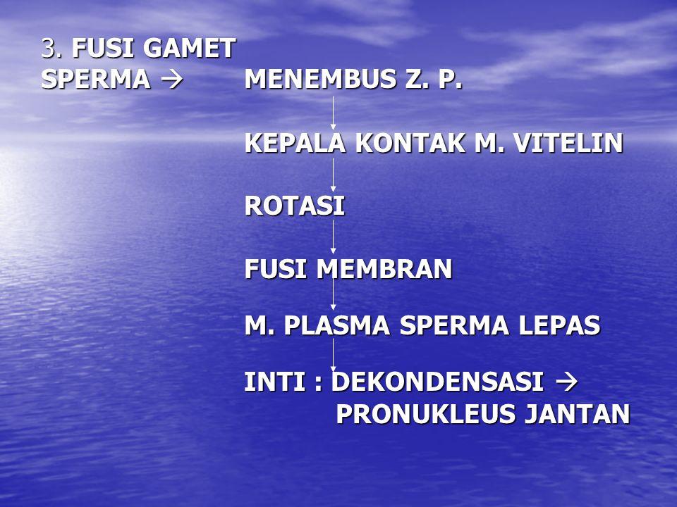 3. FUSI GAMET SPERMA  MENEMBUS Z. P. KEPALA KONTAK M.