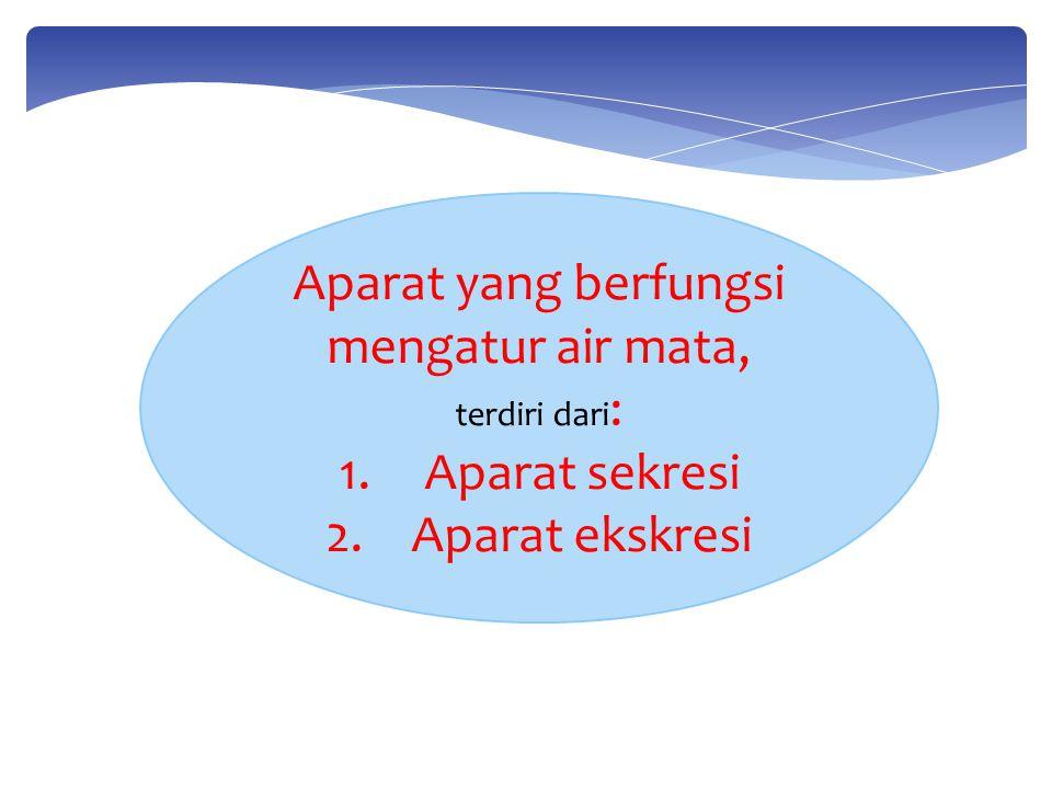1.Aparat Sekresi --> produksi air mata  orbital lacrimal gland  eyelids lacrimal gland  gland.