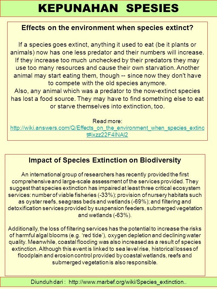 Diunduh dari : http://www.marbef.org/wiki/Species_extinction.. KEPUNAHAN SPESIES Effects on the environment when species extinct? If a species goes ex
