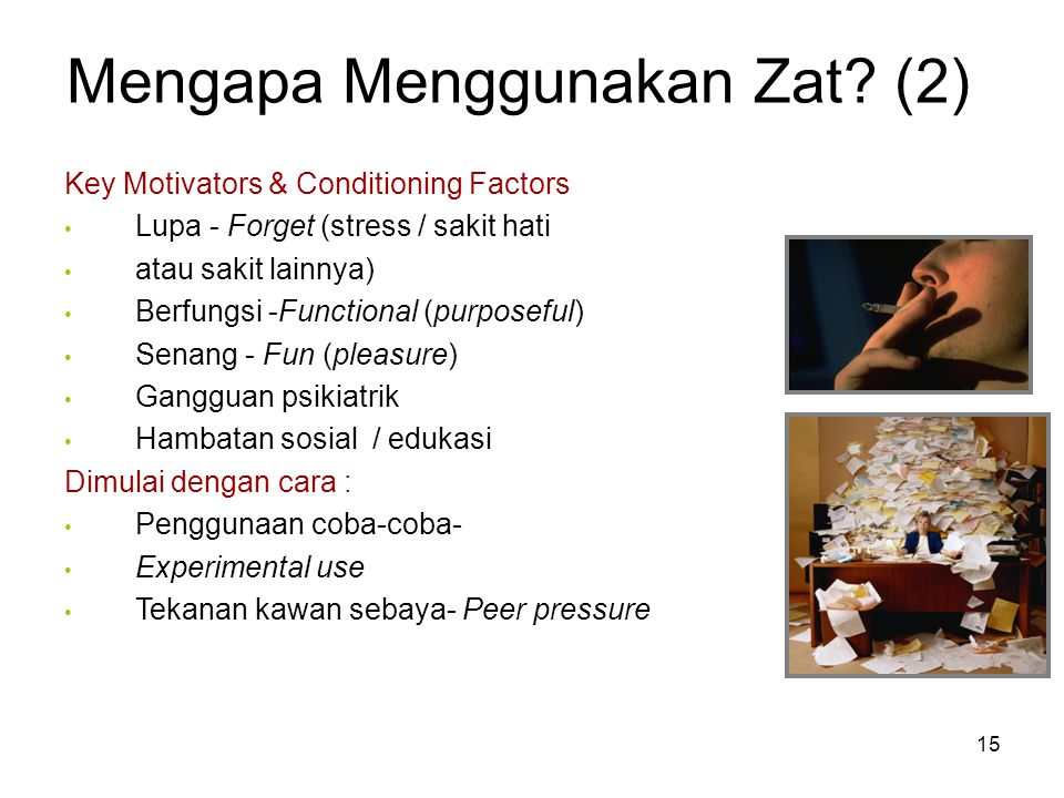 Mengapa Menggunakan Zat? (2) Key Motivators & Conditioning Factors Lupa - Forget (stress / sakit hati atau sakit lainnya) Berfungsi -Functional (purpo