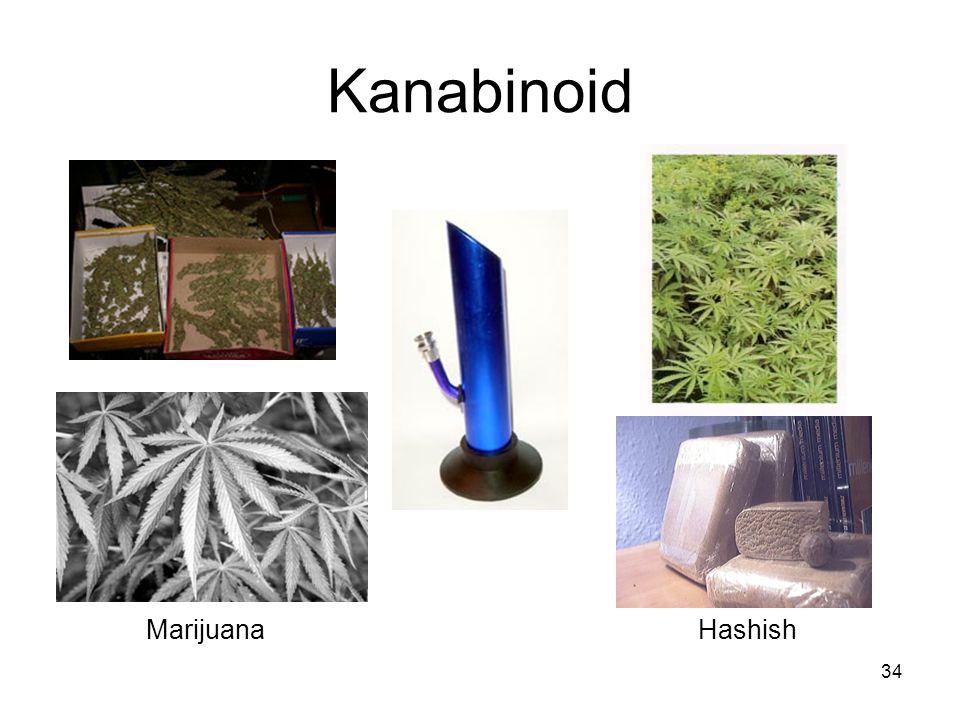 Kanabinoid HashishMarijuana 34