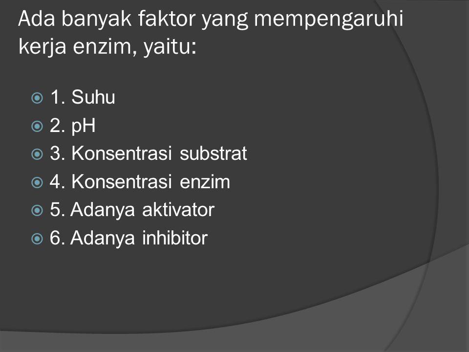 Ada banyak faktor yang mempengaruhi kerja enzim, yaitu: 11. Suhu 22. pH 33. Konsentrasi substrat 44. Konsentrasi enzim 55. Adanya aktivator