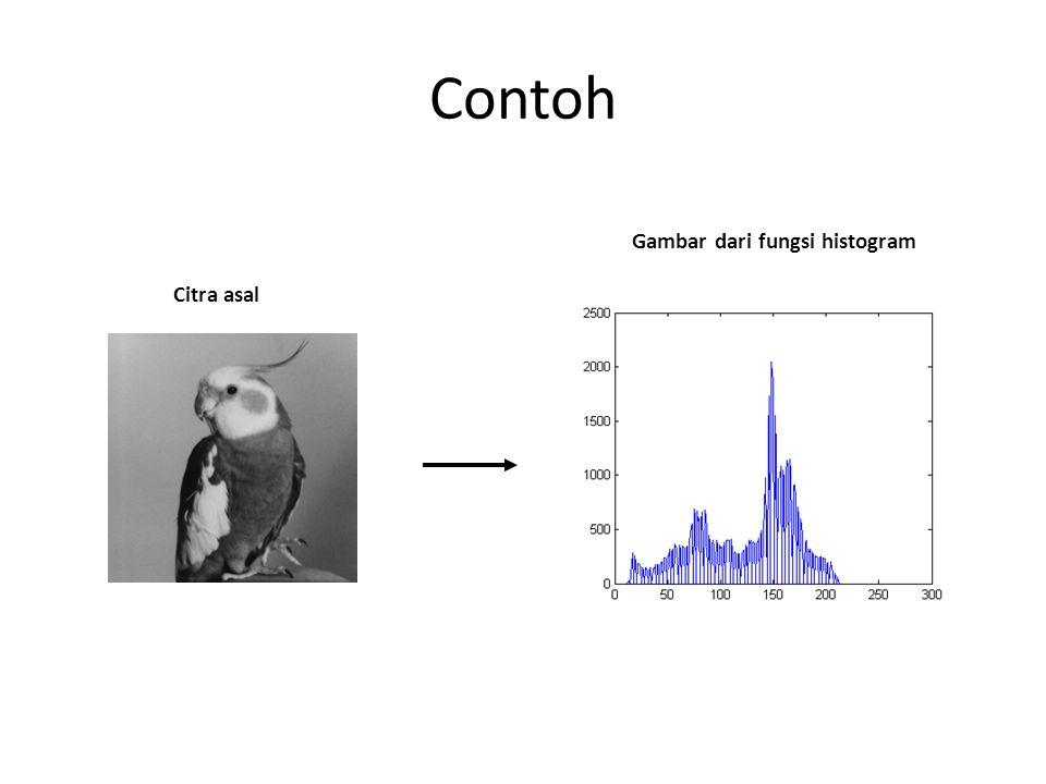 Contoh Gambar dari fungsi histogram Citra asal