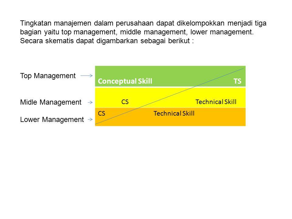 Tingkatan manajemen dalam perusahaan dapat dikelompokkan menjadi tiga bagian yaitu top management, middle management, lower management.