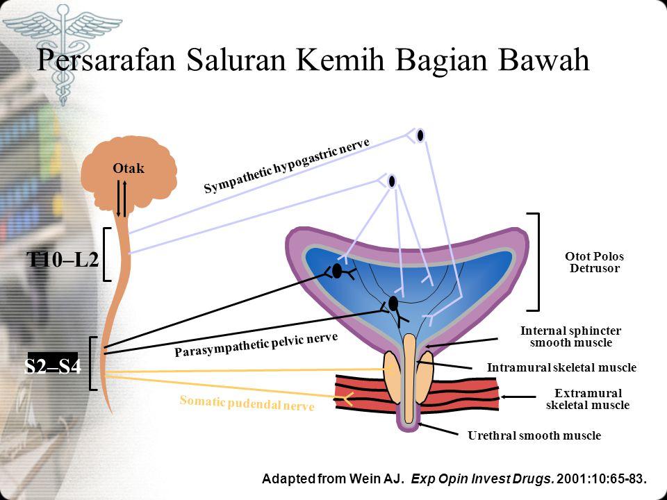 18 Diagnosis Pemeriksaan Fisik Melakukan pemeriksaan umum, abdomen (palpasi buli-buli), dan pemeriksaan neurologi Melakukan pemeriksaan panggul dan dubur pada wanita dan pemeriksaan dubur pada laki-laki Mengobservasi keluarnya urine padastress (misalnya batuk, valsava, dll) Melakukan pemeriksaan residu urine apabila diduga ada obstruksi bagian bawah (kesulitan berkemih, BPH, operasi daerah panggul sebelumnya) Fantl JA al.