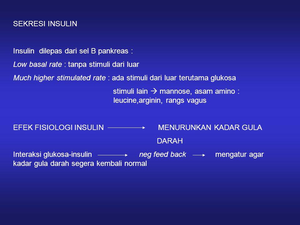 SEKRESI INSULIN Insulin dilepas dari sel B pankreas : Low basal rate : tanpa stimuli dari luar Much higher stimulated rate : ada stimuli dari luar ter