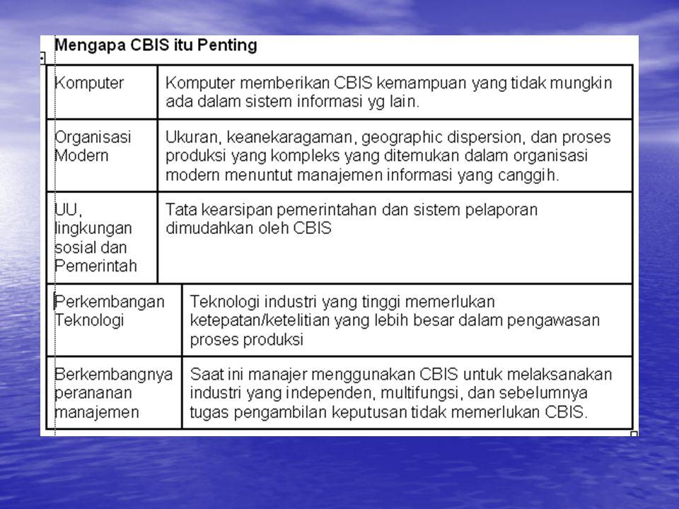 Hubungan antar CBIS Walaupun terdapat peningkatan penerimaan terhadap konsep yang berbeda terhadap tipe CBIS, tetapi belum ada kesepakatan pada hubungan anatr CBIS dan peran CBIS dalam organisasi.