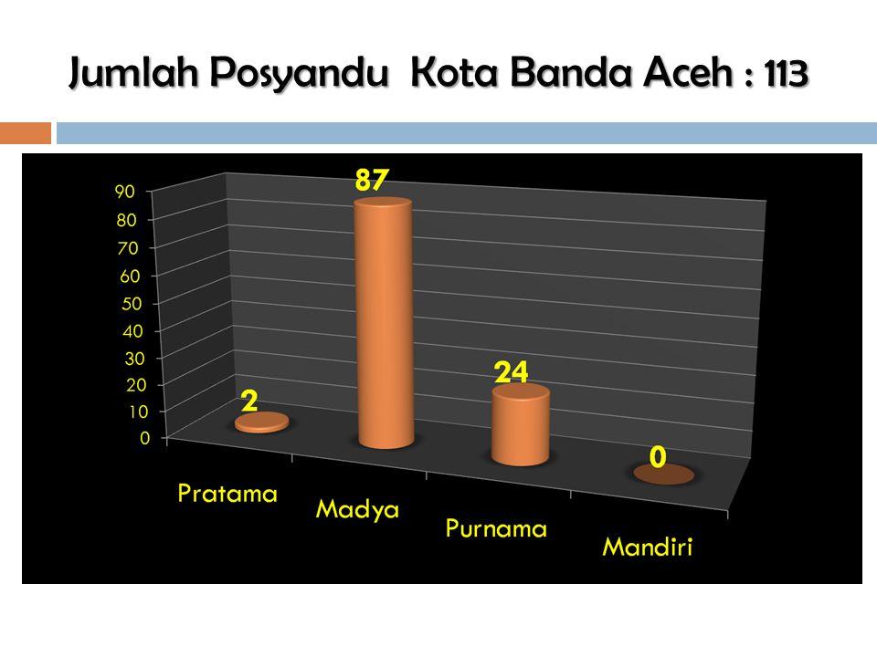 Jumlah Posyandu Kota Banda Aceh : 113