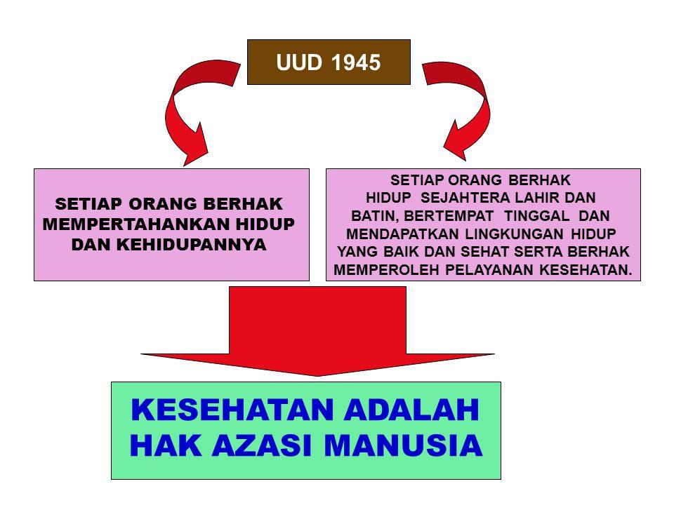 Indikator Tingkat Perkembangan Posyandu Indonesia No.