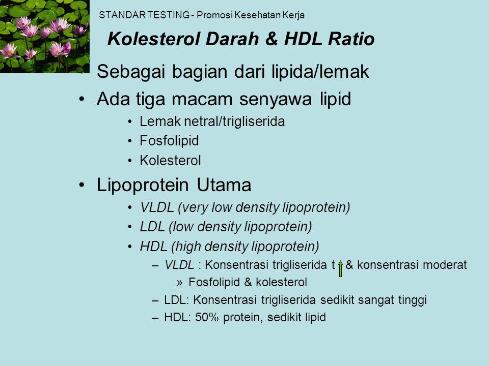 Sebagai bagian dari lipida/lemak Ada tiga macam senyawa lipid Lemak netral/trigliserida Fosfolipid Kolesterol Lipoprotein Utama VLDL (very low density
