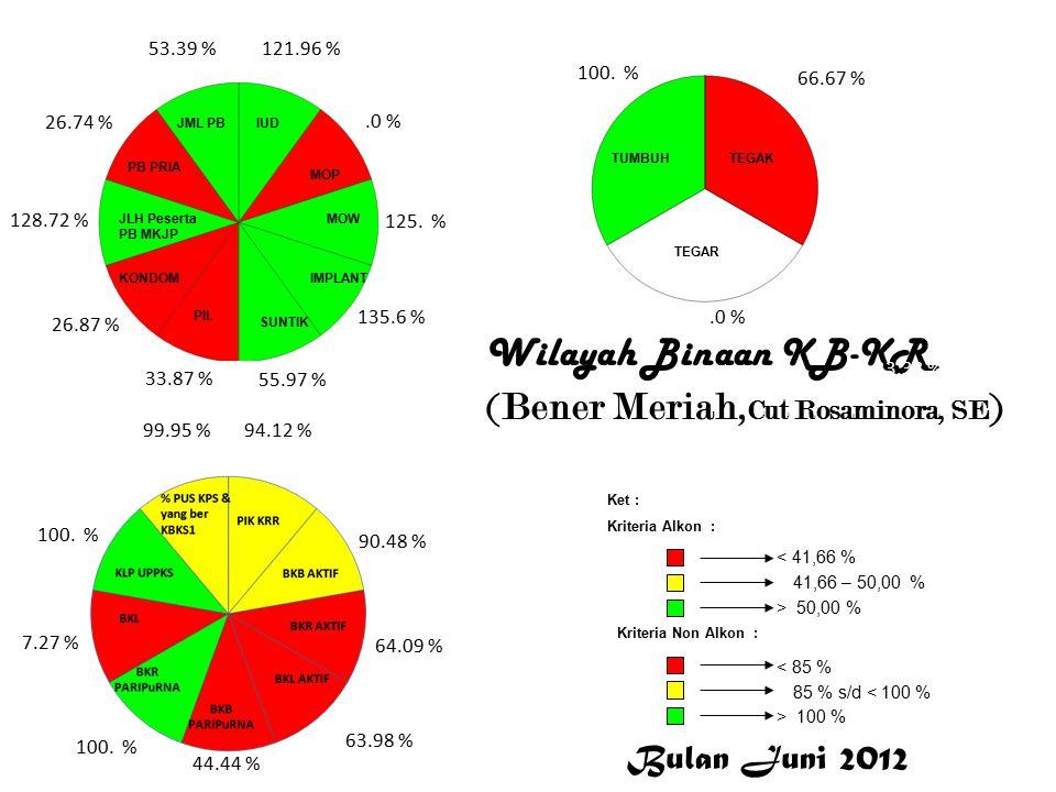 Wilayah Binaan KB-KR (Bener Meriah, Cut Rosaminora, SE ) 121.96 %.0 % 125.