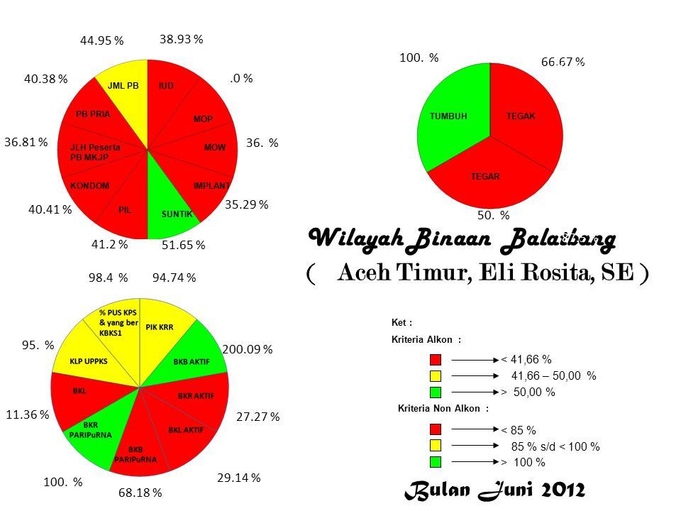 Wilayah Binaan Balatbang ( Aceh Timur, Eli Rosita, SE ) 38.93 %.0 % 36.