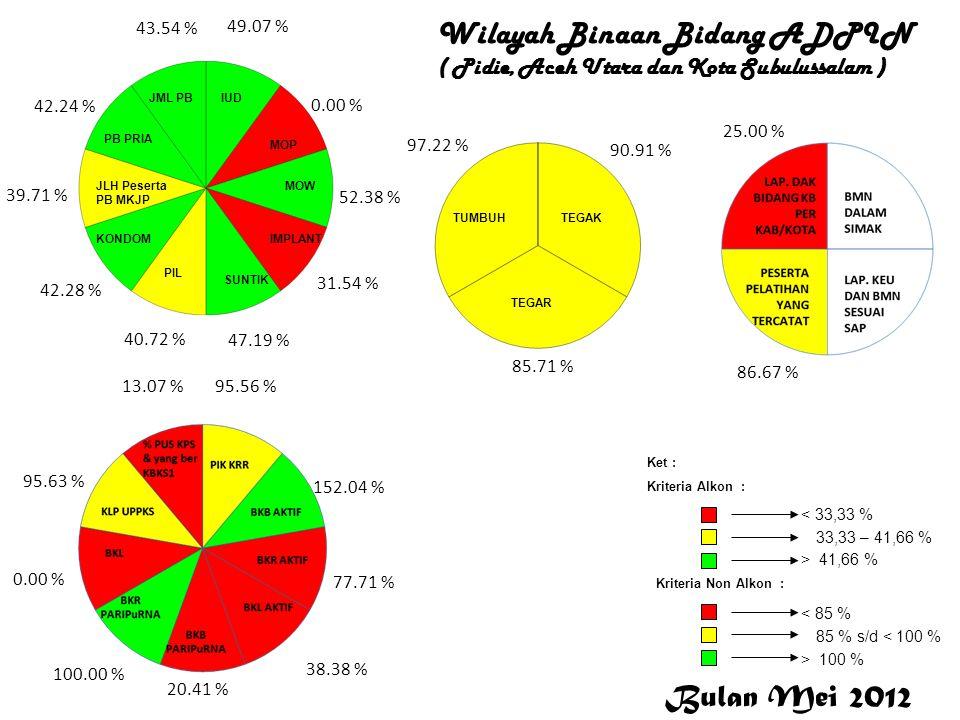 ADPIN Wilayah Binaan Bidang ADPIN ( Pidie, Aceh Utara dan Kota Subulussalam ) ADPIN 49.07 % 0.00 % 52.38 % 31.54 % 47.19 % 40.72 % 42.28 % 39.71 % 42.
