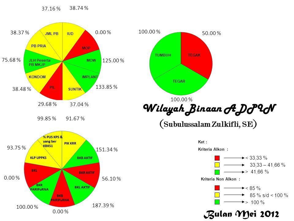 Subulussalam Wilayah Binaan ADPIN ( Subulussalam Zulkifli, SE ) Subulussalam 38.74 % 0.00 % 125.00 % 133.85 % 37.04 % 29.68 % 38.48 % 75.68 % 38.37 %