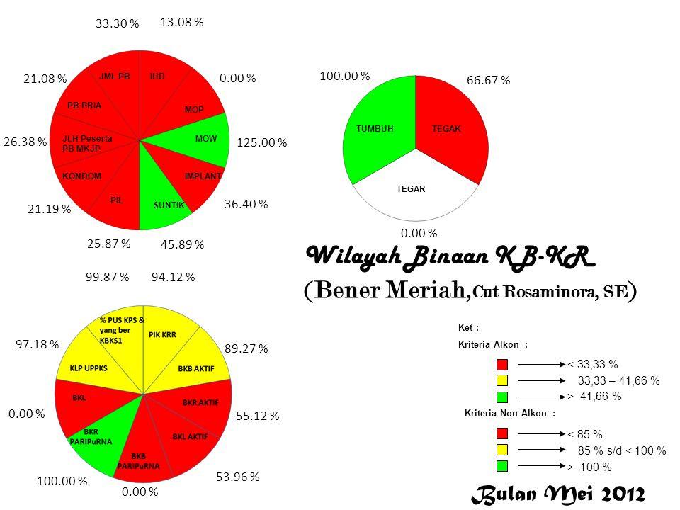Wilayah Binaan KB-KR (Bener Meriah, Cut Rosaminora, SE ) 13.08 % 0.00 % 125.00 % 36.40 % 45.89 % 25.87 % 21.19 % 26.38 % 21.08 % 33.30 % 94.12 % 89.27