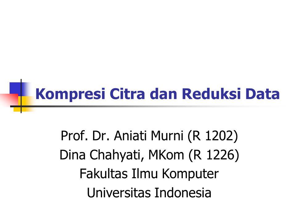 Kompresi Citra dan Reduksi Data Prof. Dr. Aniati Murni (R 1202) Dina Chahyati, MKom (R 1226) Fakultas Ilmu Komputer Universitas Indonesia