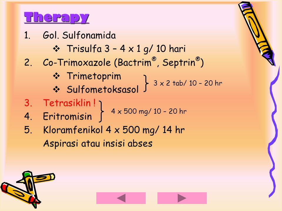 Therapy 1.Gol. Sulfonamida  Trisulfa 3 – 4 x 1 g/ 10 hari 2.Co-Trimoxazole (Bactrim ®, Septrin ® )  Trimetoprim  Sulfometoksasol 3.Tetrasiklin ! 4.