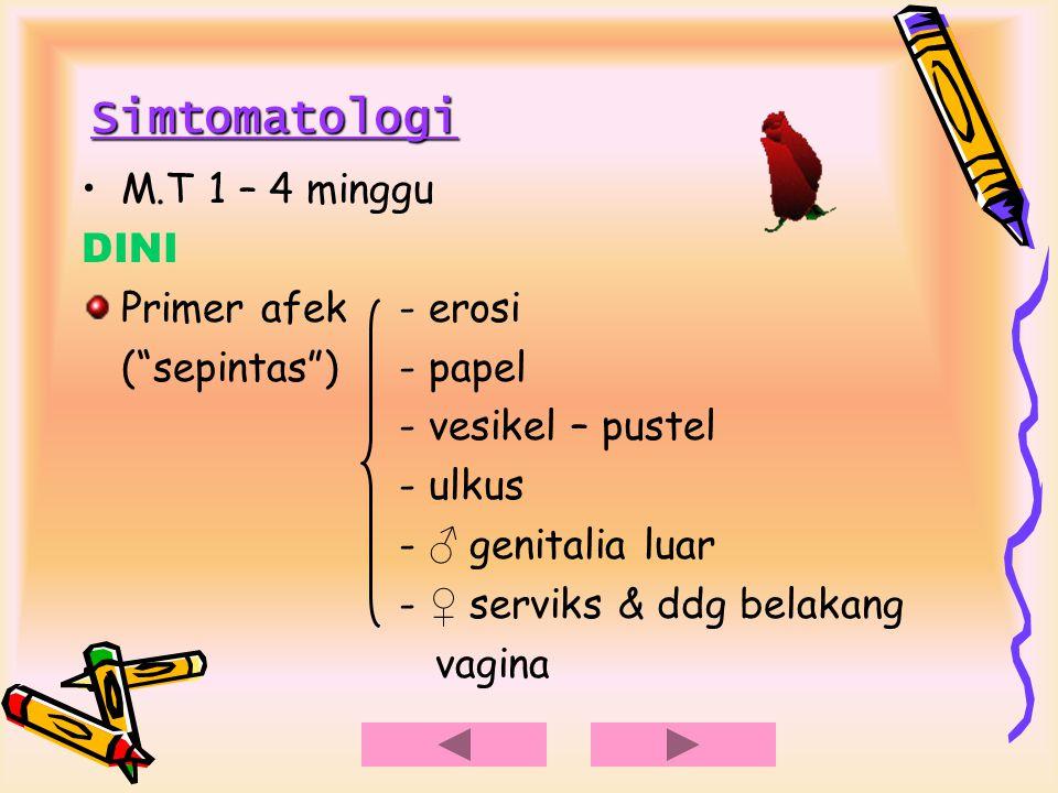 "Simtomatologi M.T 1 – 4 minggu DINI Primer afek- erosi (""sepintas"")- papel - vesikel – pustel - ulkus - ♂ genitalia luar - ♀ serviks & ddg belakang va"