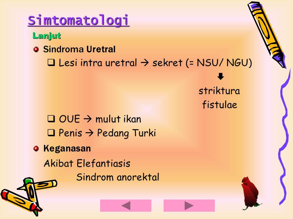 Simtomatologi Lanjut Sindroma Uretral  Lesi intra uretral  sekret (= NSU/ NGU)  striktura fistulae  OUE  mulut ikan  Penis  Pedang Turki Kegana