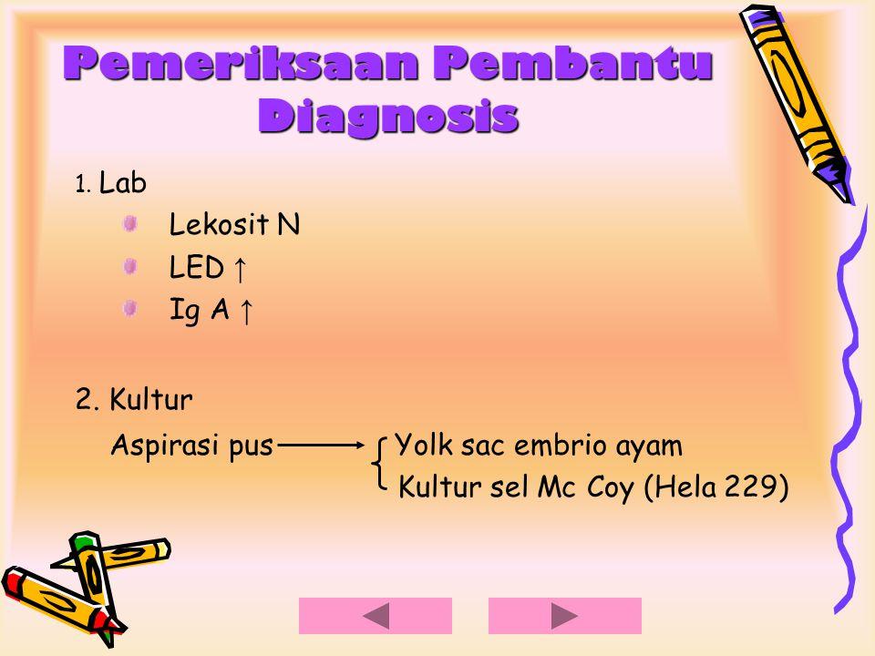 Pemeriksaan Pembantu Diagnosis 3.Tes Frei a.