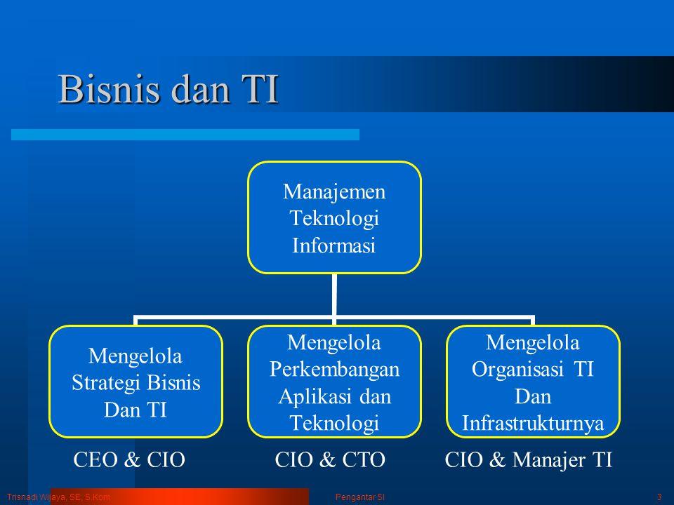Trisnadi Wijaya, SE, S.Kom Pengantar SI14 Perkembangan Sistem Global Beberapa strategi dapat digunakan untuk mengatasi masalah pengembangan sistem yang timbul dalam TI global.