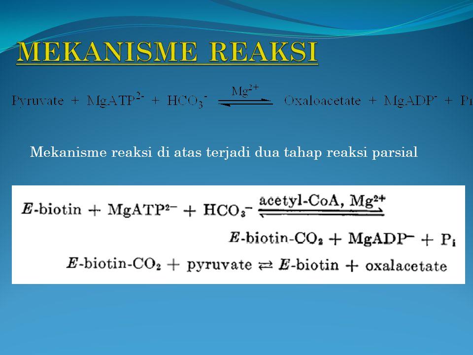 Mekanisme reaksi di atas terjadi dua tahap reaksi parsial