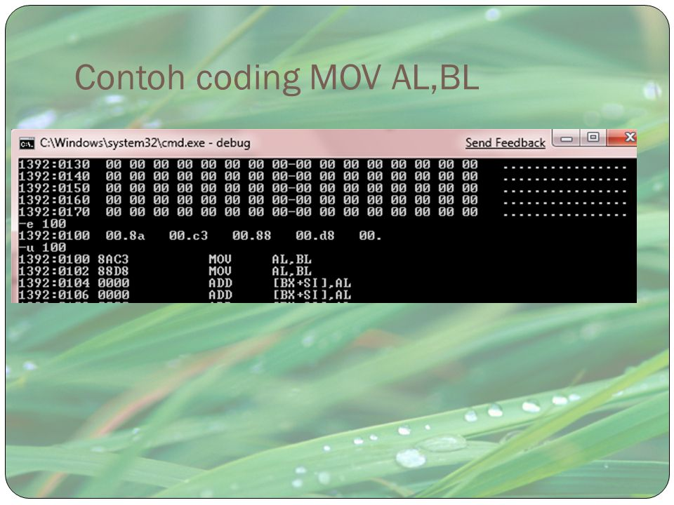 Contoh coding MOV AL,BL
