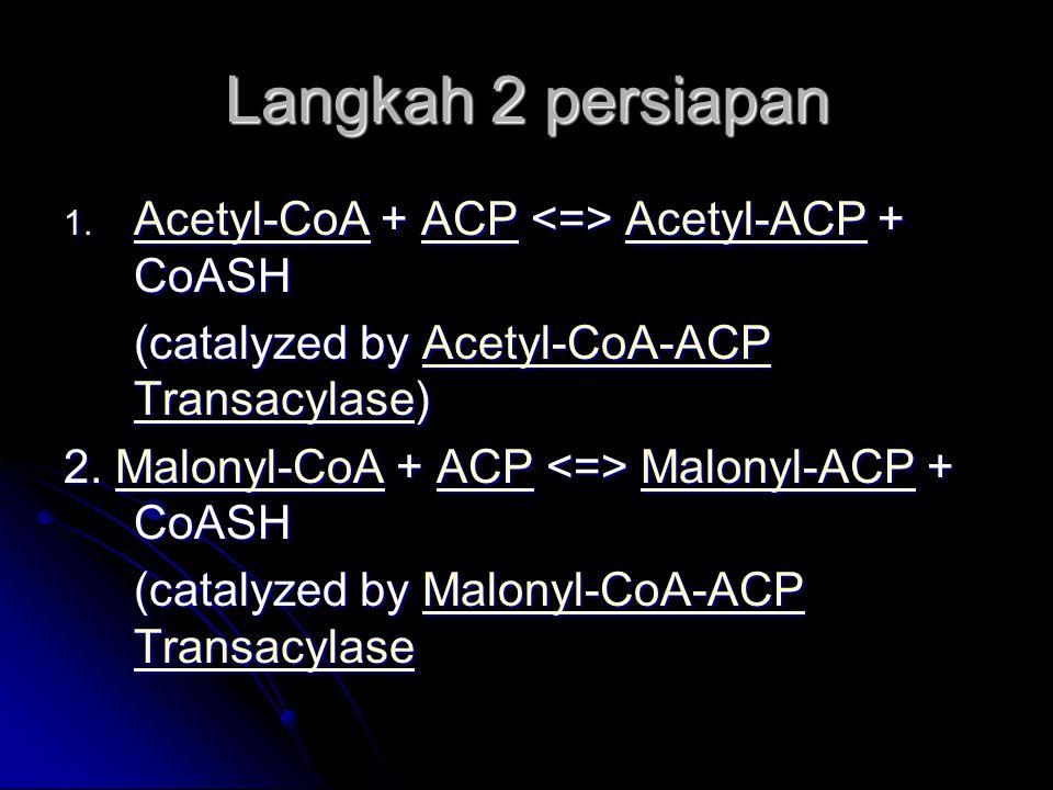 Langkah 2 persiapan 1. Acetyl-CoA + ACP Acetyl-ACP + CoASH Acetyl-CoAACPAcetyl-ACP Acetyl-CoAACPAcetyl-ACP (catalyzed by Acetyl-CoA-ACP Transacylase)