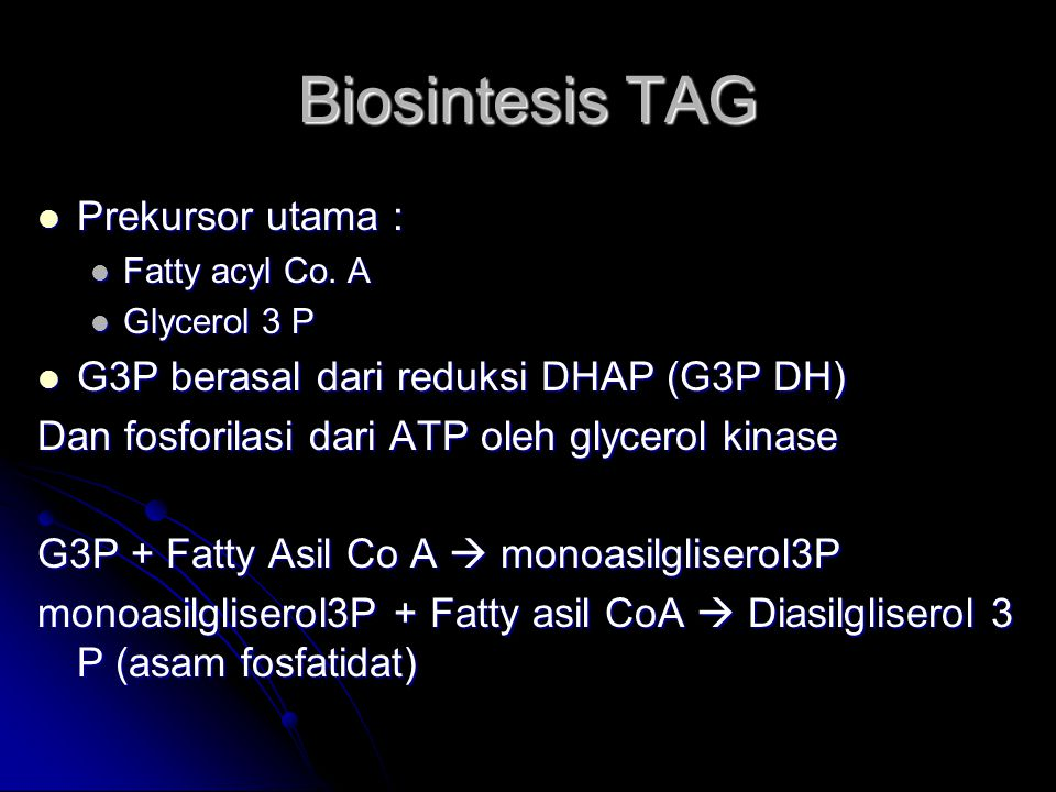 Biosintesis TAG Prekursor utama : Prekursor utama : Fatty acyl Co. A Fatty acyl Co. A Glycerol 3 P Glycerol 3 P G3P berasal dari reduksi DHAP (G3P DH)