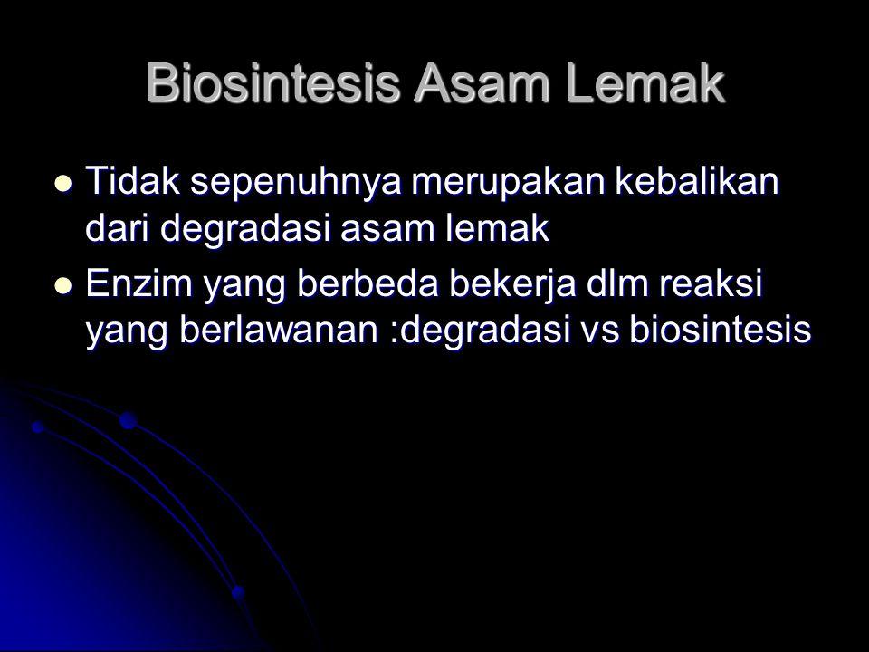 Biosintesis Asam Lemak Tidak sepenuhnya merupakan kebalikan dari degradasi asam lemak Tidak sepenuhnya merupakan kebalikan dari degradasi asam lemak E