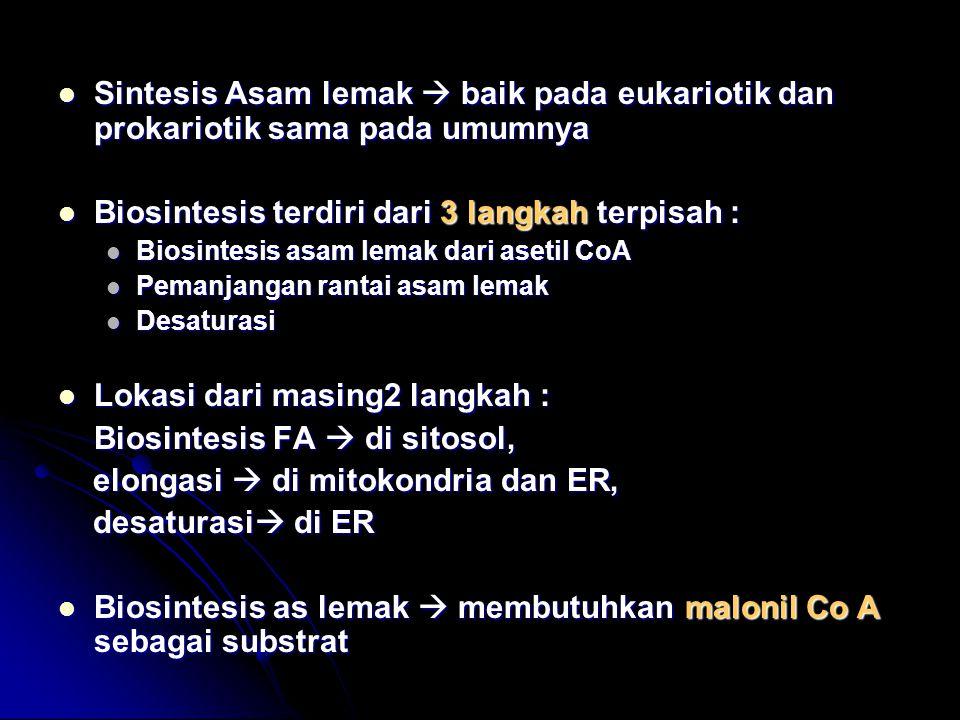 Sintesis Asam lemak  baik pada eukariotik dan prokariotik sama pada umumnya Sintesis Asam lemak  baik pada eukariotik dan prokariotik sama pada umum