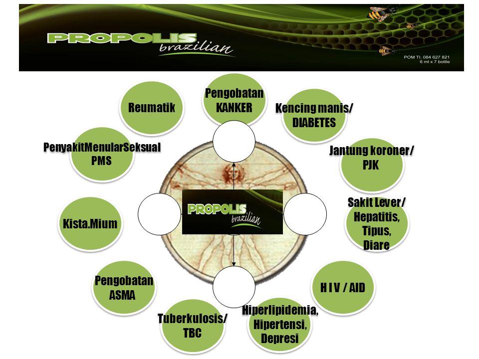 Hipocrates, 460-377sm( Bapak Kedokteran dunia), merekomendasikan propolis untuk pengobatan luka luar dan dalam.