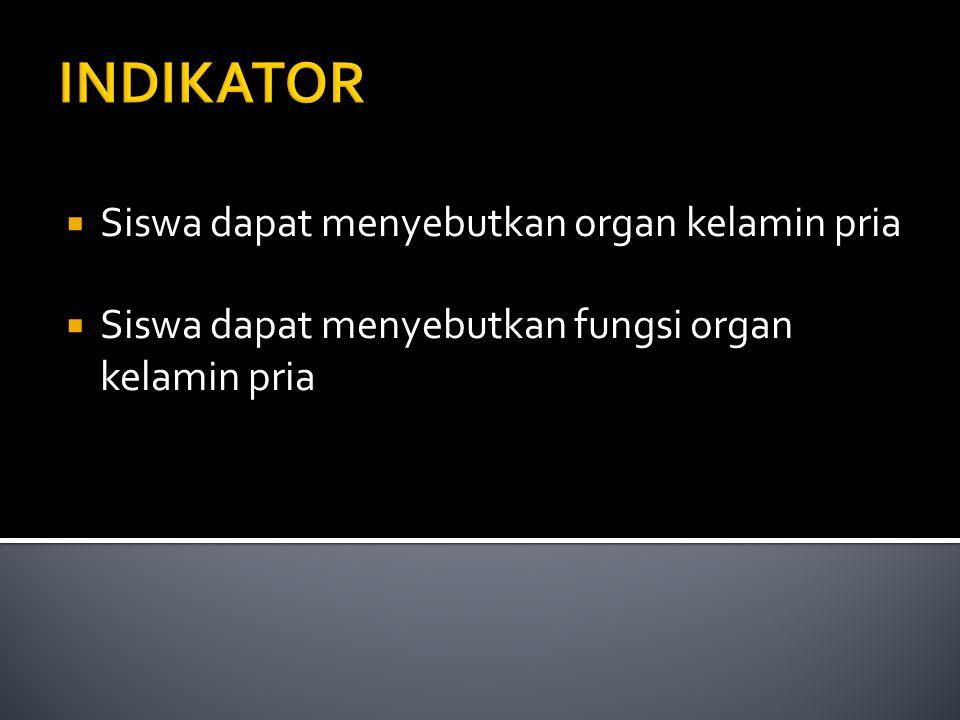 KD  Menjelaskan keterkaitan antara struktur, fungsi, dan proses yang meliputi pembentukan sel kelamin, ovulasi, menstruasi, fertilisasi, kehamilan da