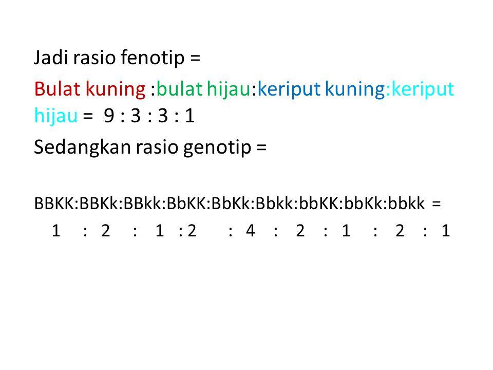 Jadi rasio fenotip = Bulat kuning :bulat hijau:keriput kuning:keriput hijau = 9 : 3 : 3 : 1 Sedangkan rasio genotip = BBKK:BBKk:BBkk:BbKK:BbKk:Bbkk:bb