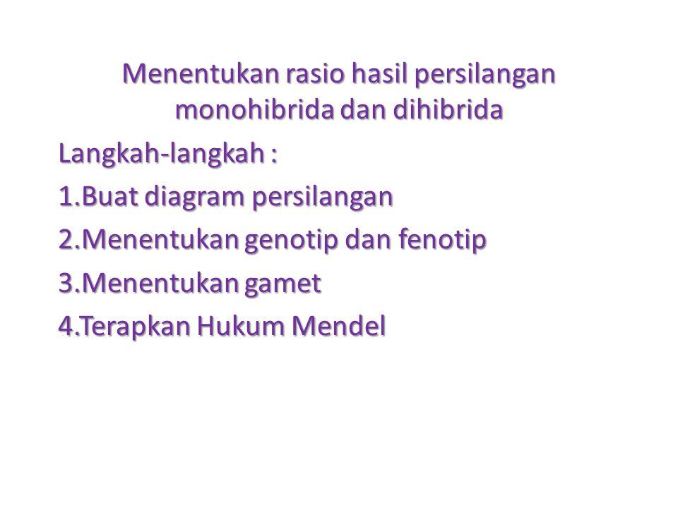 Menentukan rasio hasil persilangan monohibrida dan dihibrida Langkah-langkah : 1.Buat diagram persilangan 2.Menentukan genotip dan fenotip 3.Menentuka