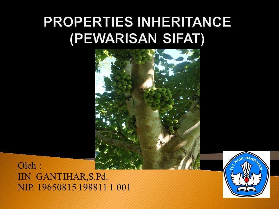 Oleh : IIN GANTIHAR,S.Pd. NIP. 19650815 198811 1 001