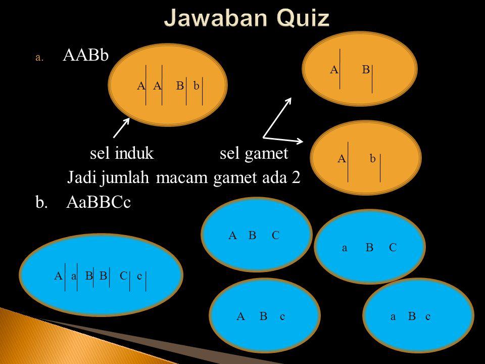 Persilangan biji Bulat (A) kuning (B) dan biji kisut (a) hijau (b): P ( Parental ) : AABB x aabb gametnya AB ab F1 (Filial ke 1) 100% AaBb Berbiji bulat kuning Persilangan sesama F1 : AaBb x AaBb gametnya AB,Ab BK,Bk aB,ab aB,ab Ratio genotipe : BBKK (1) : BBKk (2) : BbKK (2) : BbKk (4) : bbKK (1) : bbKk (2) : BBkk (1) : Bbkk (2) : bbkk (1) = 1 : 2 : 2 : 4 : 1 : 2 : 1 : 2 : 1 Ratio fenotipe = ??.