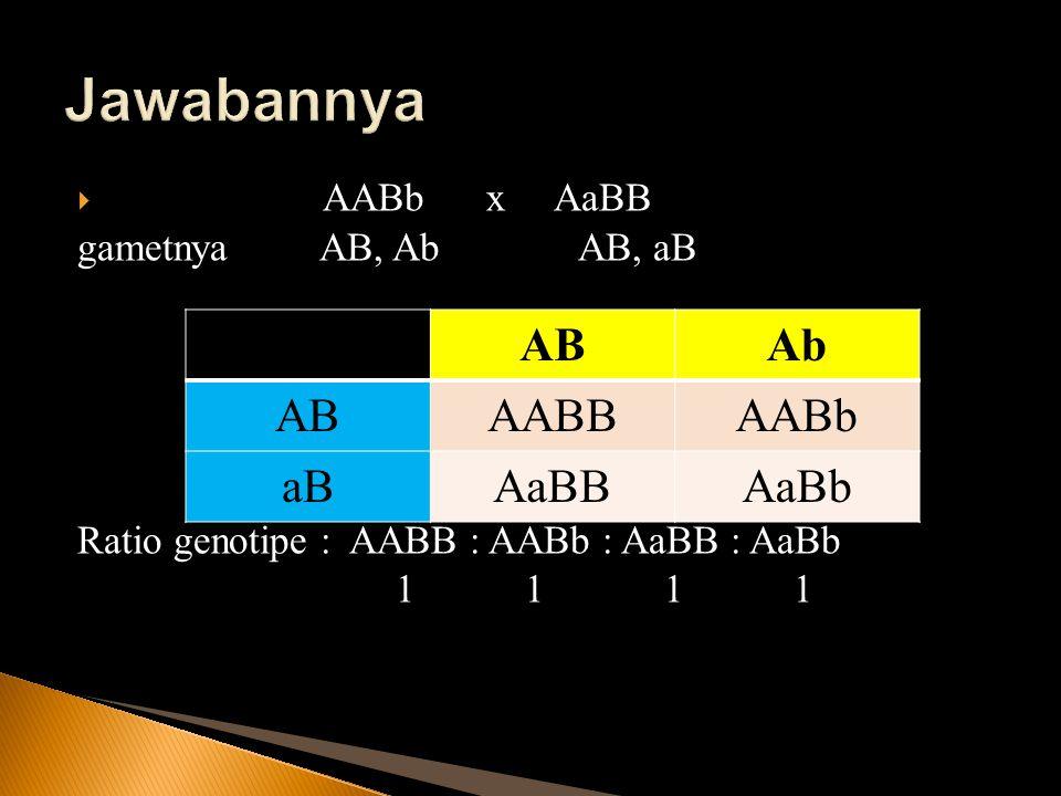  AABb x AaBB gametnya AB, Ab AB, aB Ratio genotipe : AABB : AABb : AaBB : AaBb 1 1 1 1 ABAb ABAABBAABb aBAaBBAaBb