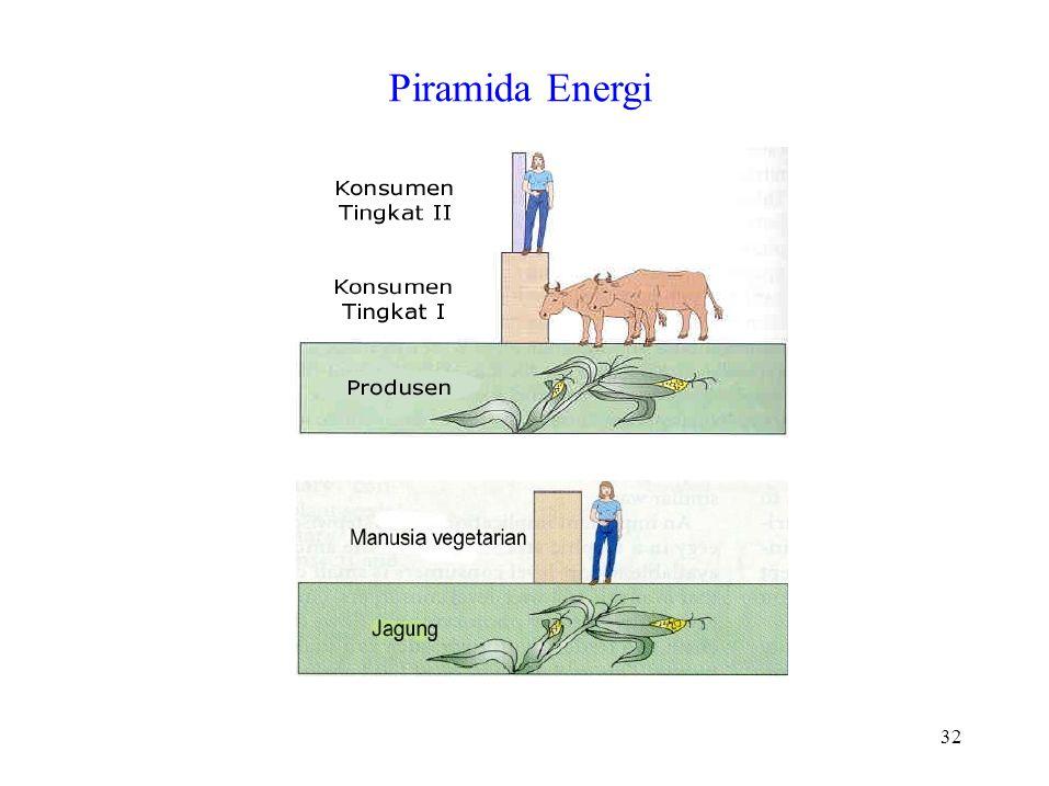 32 Piramida Energi