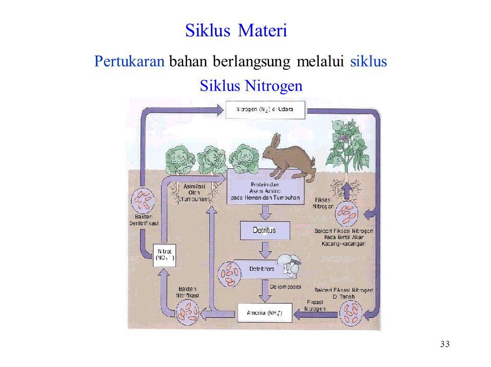 33 Pertukaran bahan berlangsung melalui siklus Siklus Nitrogen Siklus Materi