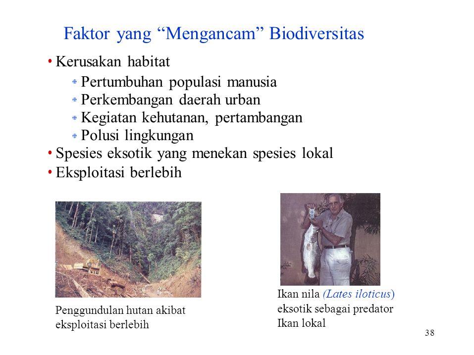 38 Penggundulan hutan akibat eksploitasi berlebih eksotik sebagai predator Ikan lokal Faktor yang Mengancam Biodiversitas Kerusakan habitat Pertumbuhan populasi manusia Perkembangan daerah urban Kegiatan kehutanan, pertambangan Polusi lingkungan Spesies eksotik yang menekan spesies lokal Eksploitasi berlebih Ikan nila (Lates iloticus)