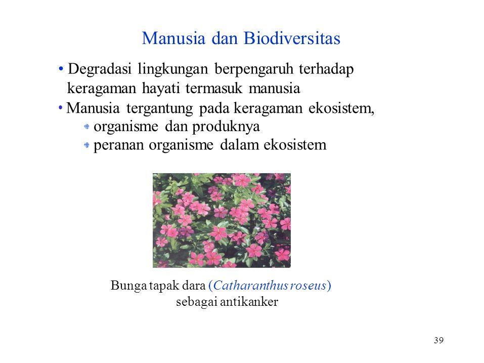 39 Degradasi lingkungan berpengaruh terhadap keragaman hayati termasuk manusia Manusia tergantung pada keragaman ekosistem, organisme dan produknya peranan organisme dalam ekosistem Bunga tapak dara (Catharanthus roseus) sebagai antikanker Manusia dan Biodiversitas