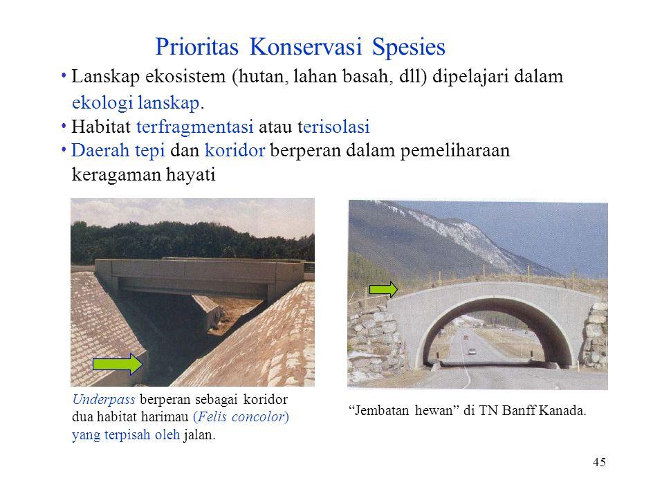 Underpass berperan sebagai koridor dua habitat harimau (Felis concolor) yang terpisah oleh jalan. 45 Prioritas Konservasi Spesies Lanskap ekosistem (h