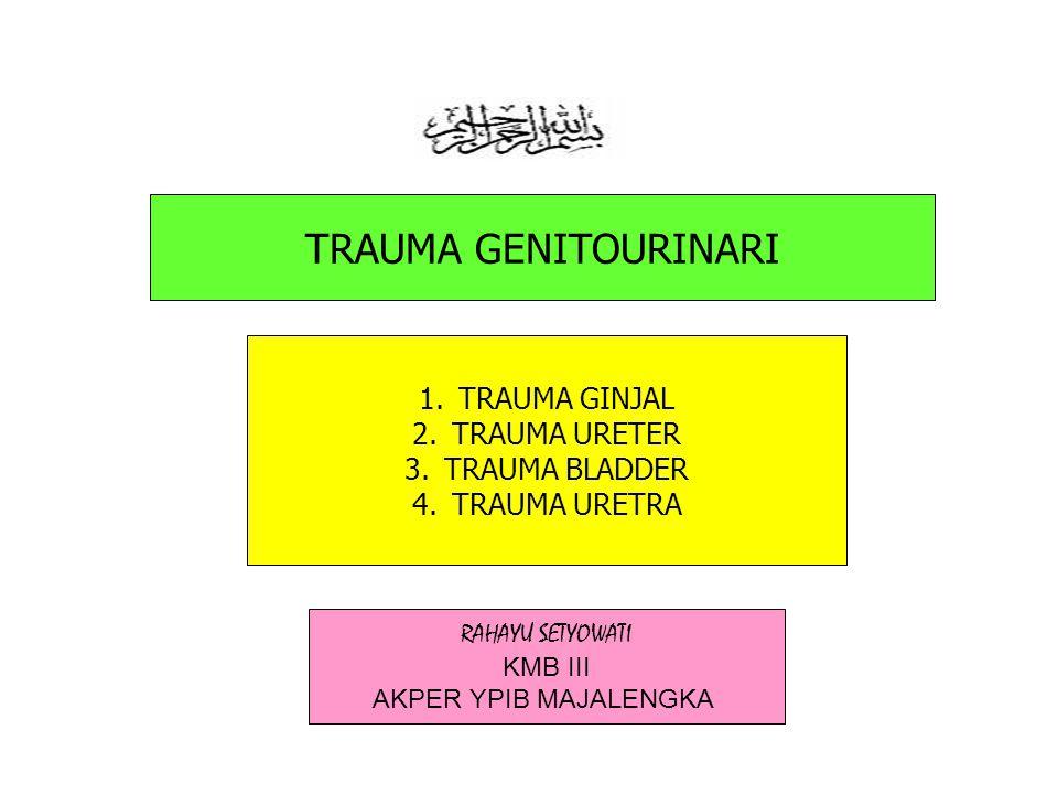 TRAUMA GENITOURINARI 1.TRAUMA GINJAL 2.TRAUMA URETER 3.TRAUMA BLADDER 4.TRAUMA URETRA RAHAYU SETYOWATI KMB III AKPER YPIB MAJALENGKA
