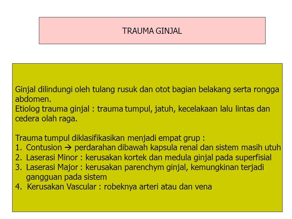 TRAUMA GINJAL Ginjal dilindungi oleh tulang rusuk dan otot bagian belakang serta rongga abdomen. Etiolog trauma ginjal : trauma tumpul, jatuh, kecelak