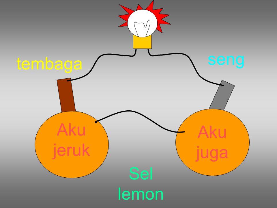 Sel lemon tembaga seng Aku jeruk Aku juga