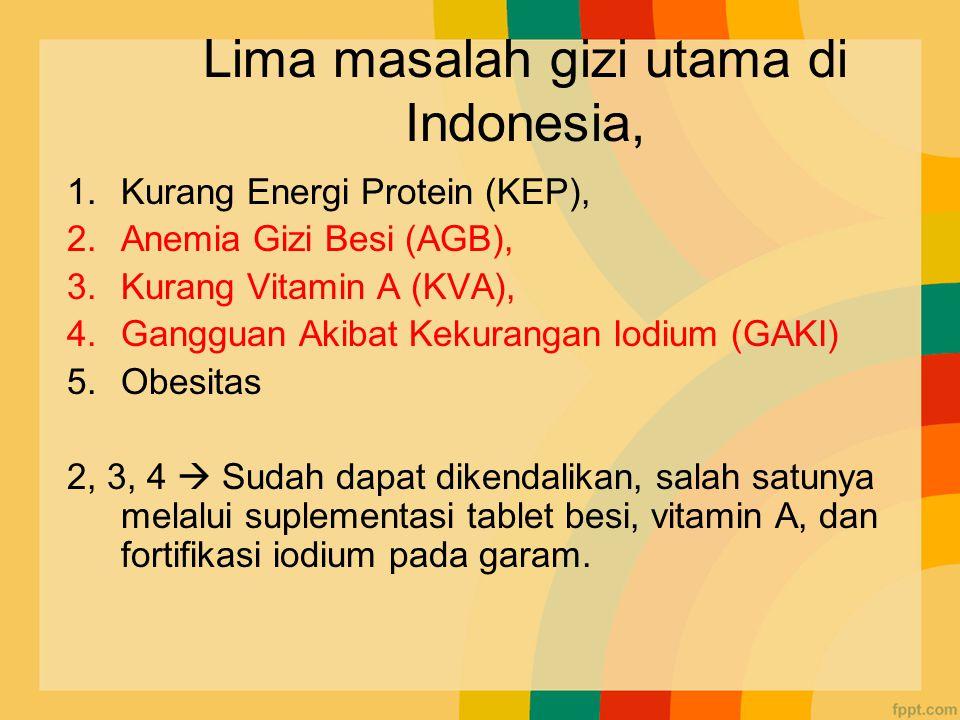 Lima masalah gizi utama di Indonesia, 1.Kurang Energi Protein (KEP), 2.Anemia Gizi Besi (AGB), 3.Kurang Vitamin A (KVA), 4.Gangguan Akibat Kekurangan Iodium (GAKI) 5.Obesitas 2, 3, 4  Sudah dapat dikendalikan, salah satunya melalui suplementasi tablet besi, vitamin A, dan fortifikasi iodium pada garam.