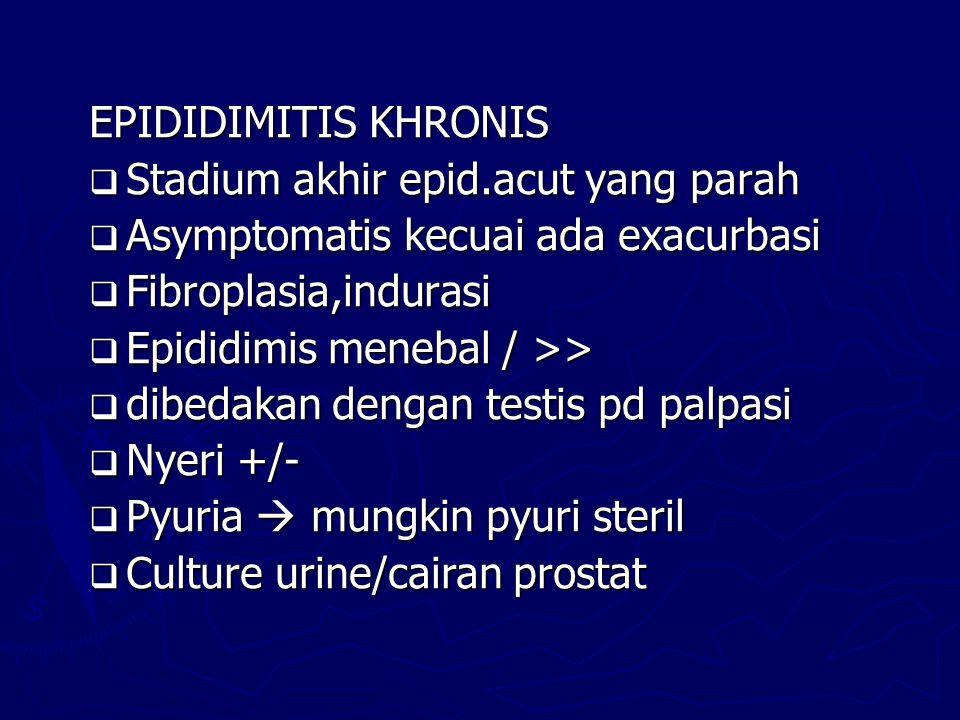 EPIDIDIMITIS KHRONIS  Stadium akhir epid.acut yang parah  Asymptomatis kecuai ada exacurbasi  Fibroplasia,indurasi  Epididimis menebal / >>  dibe